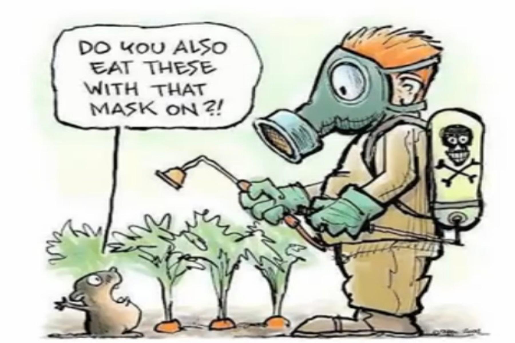 onbespoten groenten
